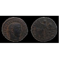 Maximianus folis
